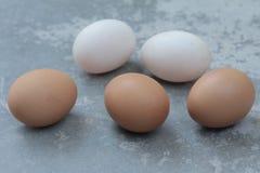 fundo do vintage dos ovos da galinha e dos ovos do pato Fotografia de Stock Royalty Free