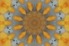 Fundo do vintage. Mandala Foto de Stock Royalty Free