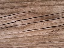Fundo do Woodgrain Foto de Stock
