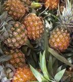 Fundo dos abacaxis do close-up Fotos de Stock Royalty Free