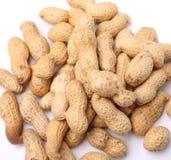 Fundo dos amendoins Imagens de Stock Royalty Free