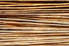 Fundo dos bambus imagens de stock