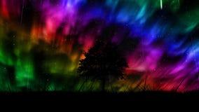 Fundo dos borealis da Aurora video estoque