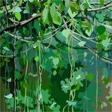 Fundo dos desenhos animados com a floresta coberto de vegetação com as folhas e as lianas do verde Foto de Stock