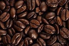 Fundo dos feijões de café Imagem de Stock