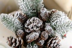 Fundo dos feriados de inverno dos cones do pinho pulverizados com neve artificial e o xaile fofo branco Marrom do Feliz Natal Foto de Stock Royalty Free