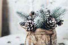 Fundo dos feriados de inverno dos cones do pinho pulverizados com neve artificial e o xaile fofo branco Marrom do Feliz Natal Foto de Stock