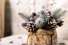 Fundo dos feriados de inverno dos cones do pinho pulverizados com neve artificial e o xaile fofo branco Marrom do Feliz Natal Imagens de Stock