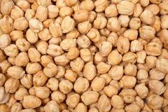 Fundo dos grãos-de-bico Fotografia de Stock