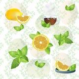 Fundo dos limões e das folhas de hortelã ilustração stock