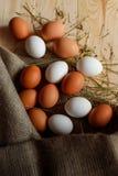 Fundo dos ovos Foto de Stock Royalty Free