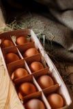 Fundo dos ovos Imagens de Stock Royalty Free