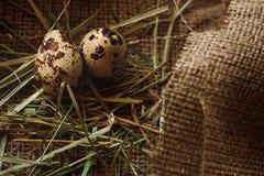 Fundo dos ovos Fotografia de Stock