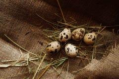 Fundo dos ovos Fotografia de Stock Royalty Free
