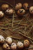 Fundo dos ovos Imagens de Stock