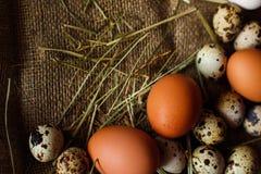 Fundo dos ovos Imagem de Stock Royalty Free