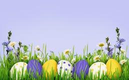Fundo dos ovos da páscoa, da grama e das flores selvagens Foto de Stock Royalty Free