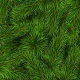 Fundo dos ramos de árvore do Natal Ilustração Royalty Free