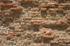 Fundo dos tijolos   Fotos de Stock Royalty Free