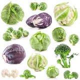 Fundo dos vegetais, couve fresca foto de stock royalty free