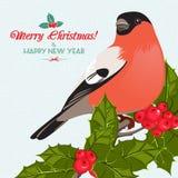 Fundo e cartão do Natal com dom-fafe e azevinho ilustração stock
