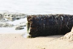 Fundo e contextos da maré da praia imagens de stock royalty free