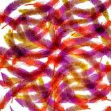 Fundo e textura coloridos Fotografia de Stock