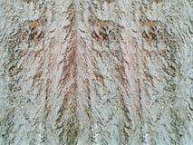 Fundo e textura da parede do cimento do almofariz da foto fotos de stock