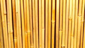Fundo e textura de bambu Fotos de Stock