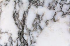 Fundo e textura de mármore brancos para o teste padrão do projeto Imagem de Stock Royalty Free