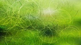 Fundo elegante bonito do projeto da arte gr?fica da ilustra??o do fundo verde da grama da folha ilustração royalty free