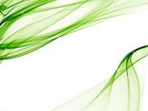 Fundo elegante com projetos brandamente verdes Foto de Stock