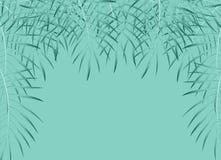 Fundo em folha de palmeira bonito Ilustração do vetor Fotos de Stock
