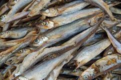 Fundo empilhado peixes secado Fotos de Stock