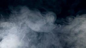 Fundo escuro com redemoinhos de fluxo da névoa Névoa, fumo, nuvem isolada em um fundo preto video estoque