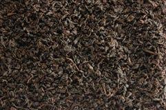 Fundo escuro do chá da folha solta, detalhe dourado preto do close up do teste padrão da textura da mistura das folhas, grande ma imagens de stock royalty free