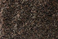 Fundo escuro do chá da folha solta, detalhe dourado preto do close up do teste padrão da textura da mistura das folhas, grande ma fotos de stock