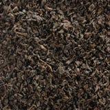 Fundo escuro do chá da folha solta, detalhe dourado preto do close up do teste padrão da textura da mistura das folhas, grande pa fotografia de stock