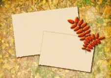 Fundo estilizado do outono com dois quadros para o texto Fotografia de Stock Royalty Free