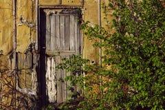 Fundo estranho abstrato Porta de madeira velha Portas velhas imagens de stock royalty free