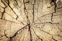 Fundo estrutural de madeira velho na repercussão Fotografia de Stock