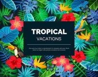 Fundo exótico tropical ilustração royalty free