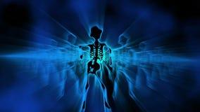 Fundo fêmea 'sexy' 7 da dança dos esqueletos VJ ilustração do vetor