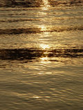 Fundo. Faíscas solares na água. Imagem de Stock