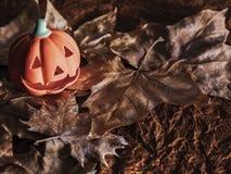 Fundo feliz da abóbora de Halloween partidos da queda fotos de stock royalty free