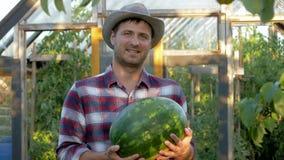 Fundo feliz da melancia de Holds Of Ripe do fazendeiro a estufa no jardim vídeos de arquivo