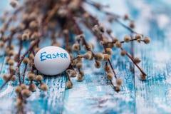 Fundo feliz da Páscoa, ovos, grupo do salgueiro de bichano fotografia de stock royalty free