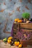 Fundo festivo decorativo da ação de graças do outono da queda com abóbora alaranjada Foto de Stock