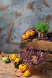 Fundo festivo decorativo da ação de graças do outono da queda com abóbora alaranjada Imagens de Stock Royalty Free