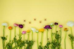 fundo flatlay do conceito da mola com flores fotos de stock